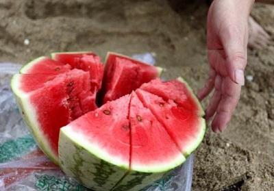 宁夏回族自治区中卫市中宁县富硒西瓜 有籽 1茬 8成熟 8斤打底