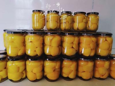 这是一张关于黄桃罐头 12-18个月的产品图片