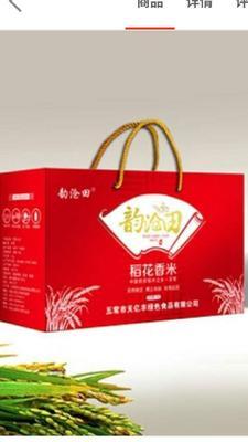 黑龙江省哈尔滨市五常市稻花香二号大米 非有机大米 晚稻 一等品
