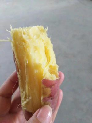陕西省西安市阎良区秦薯 红皮 5两以上