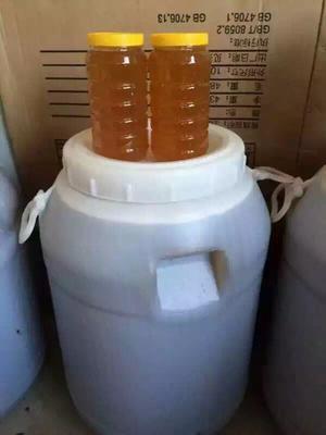 这是一张关于土蜂蜜 散装 100% 2年 的产品图片
