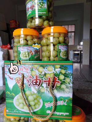 广东省汕头市澄海区玻璃种 2cm以上