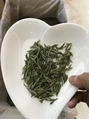 安徽省合肥市蜀山区霍山黄芽 罐装 特级