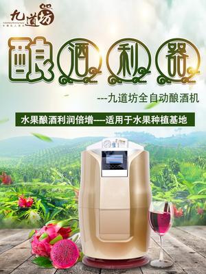 山东省济南市历城区果酒啤酒精酿一体机