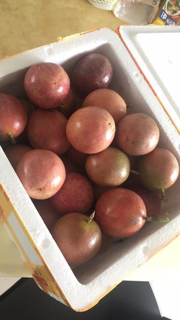 紫色百香果 50 - 60克  约5.0斤/箱