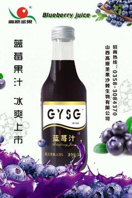 山西省太原市迎泽区沙棘汁 玻璃瓶 12-18个月