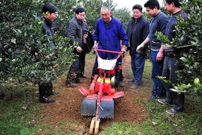 山东省潍坊市安丘市果园管理机