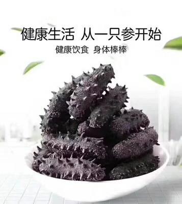 辽宁省大连市甘井子区大连海参