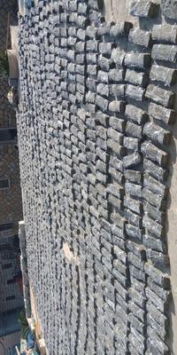 这是一张关于霞浦海带的产品图片