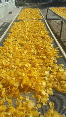 黑龙江省绥化市明水县干土豆片 24个月以上
