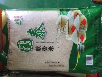 湖北省宜昌市枝江市国泰软香米 有机大米 中稻 一等品