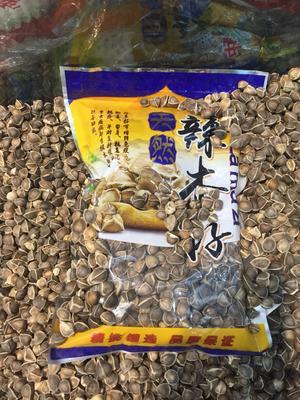青海省西宁市城东区辣木籽