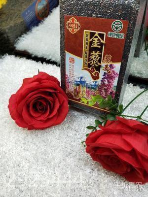 青海省西宁市城东区黑藜麦