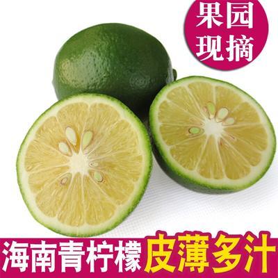 这是一张关于海南青柠 1.6 - 2两的产品图片