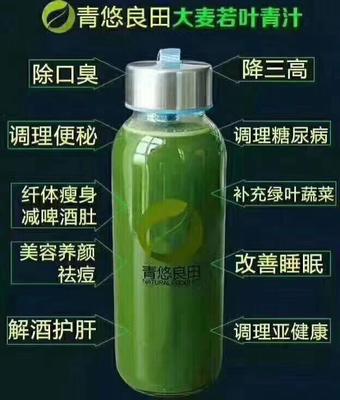 广东省深圳市南山区青汁 纸盒装 18-24个月