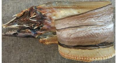 东海龙鱼 鳗鱼干