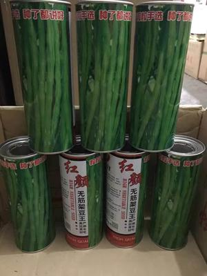 四川省成都市锦江区豆角种子 ≥97%