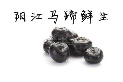 广东省阳江市江城区珍珠马蹄 小号