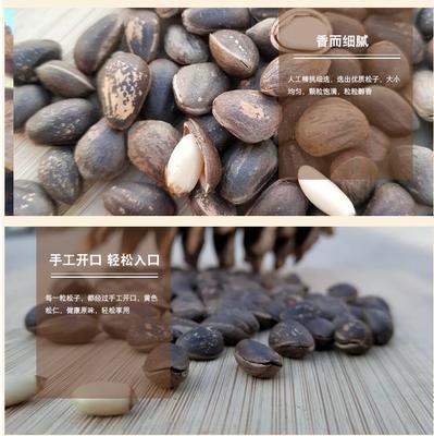 四川省凉山彝族自治州会东县松子 6-12个月 包装