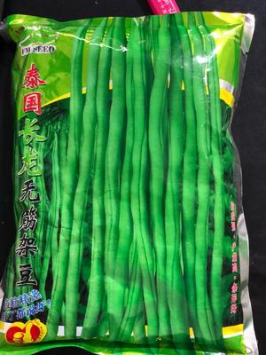 四川省成都市金牛区豆角种子 ≥95%