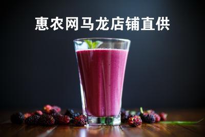 青海省西宁市城东区黑珍珠桑葚 2 - 3cm