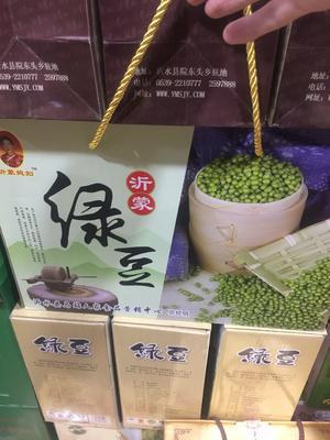 山东省临沂市沂水县毛绿豆 礼品装 1等品