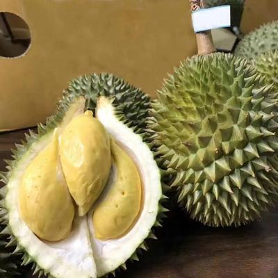 广西壮族自治区南宁市江南区巴掌榴莲 60 - 70%以上 2 - 3公斤