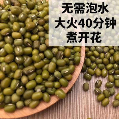 陕西省延安市黄陵县明绿豆 袋装 1等品