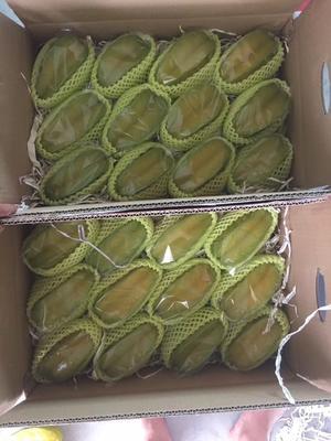 广东省汕头市澄海区甜杨桃 3 - 4两
