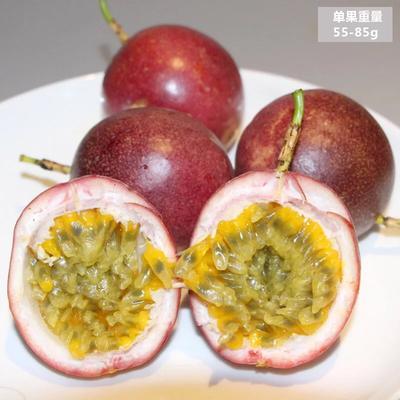 福建省龙岩市永定区紫红色百香果 50 - 60克