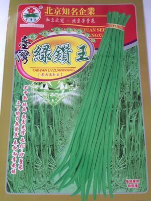 云南省昆明市官渡区豆角种子 ≥98%