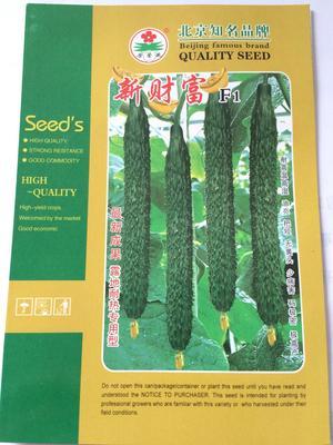 这是一张关于黄瓜种子的产品图片