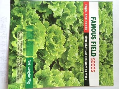 这是一张关于生菜种子的产品图片