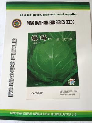 这是一张关于包菜种子的产品图片