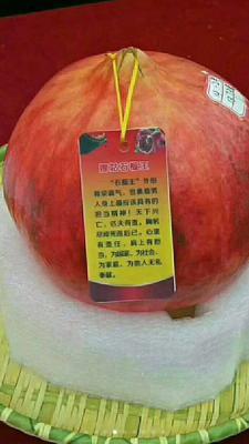 这是一张关于云南石榴 0.8 - 1斤的产品图片