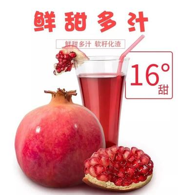 这是一张关于突尼斯软籽石榴 0.8 - 1斤的产品图片