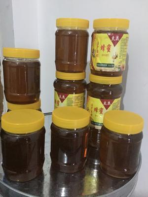 浙江省杭州市余杭区土蜂蜜 塑料瓶装 100% 2年以上