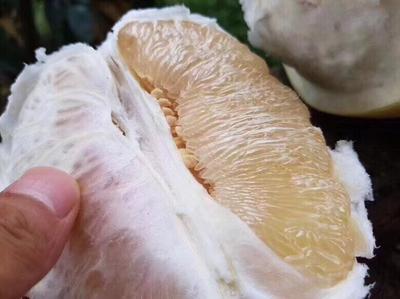 这是一张关于平和蜜柚 3斤以上的产品图片