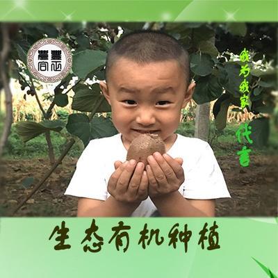 陕西省西安市临潼区徐香猕猴桃 70克以上
