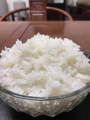 这是一张关于稻花香二号大米 绿色食品 晚稻 一等品的产品图片
