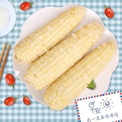 内蒙古自治区乌兰察布市察哈尔右翼前旗速冻糯玉米