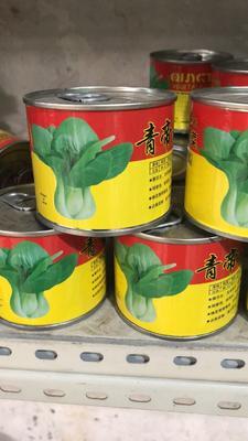 四川省成都市新都区青梗菜种子