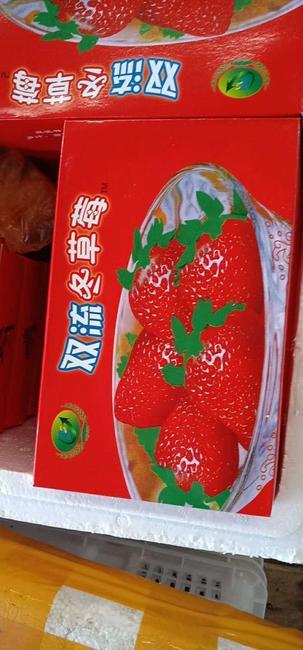 双流冬草莓 20克以上