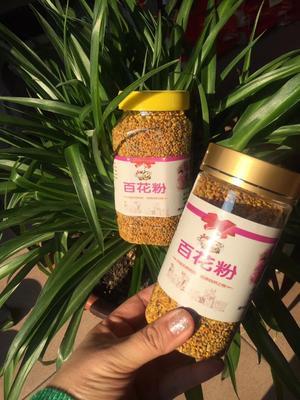 黑龙江省哈尔滨市五常市混合蜂花粉 24个月以上