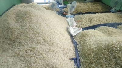 云南省昆明市盘龙区食用桃胶 24个月以上