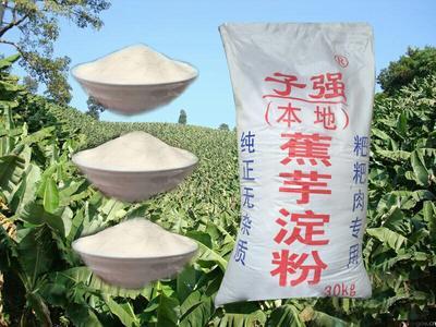 四川省自贡市沿滩区芭蕉芋淀粉