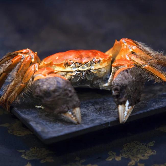 阳澄湖大闸蟹 3.5-4.0两 统货