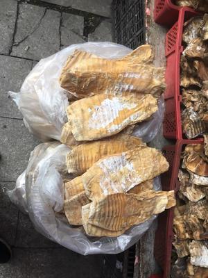 江西省宜春市袁州区干笋尖 礼盒装 1年以上