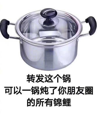湖南省长沙市芙蓉区红皮红肉火龙果苗
