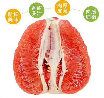 湖北省荆州市公安县红心柚 2.5斤以上